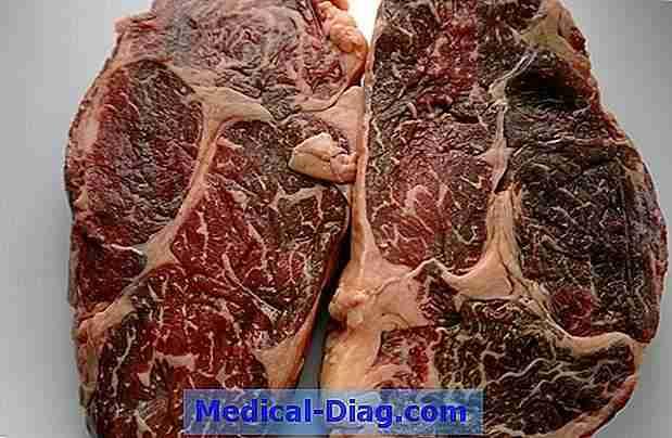 varför är kött bra