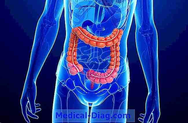 undersökning av tunntarmen