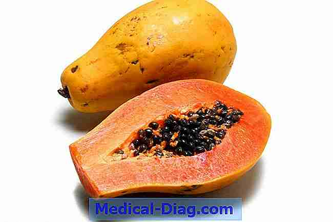 papaya frugt