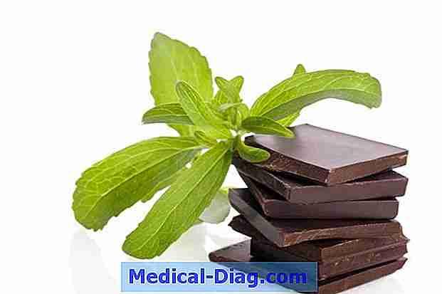 stevia gesundheitsvorteile fakten sicherheit medical. Black Bedroom Furniture Sets. Home Design Ideas